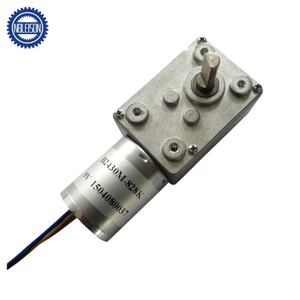 LS-WGM3246-TEC2430 Brushless Dc Worm Gear Motor
